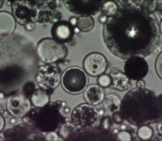 Микросфера алюмосиликатная THICK WALLED MICROSPHERE